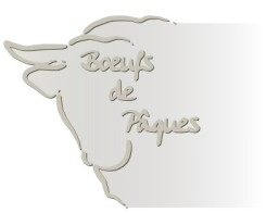logo_site_bdp